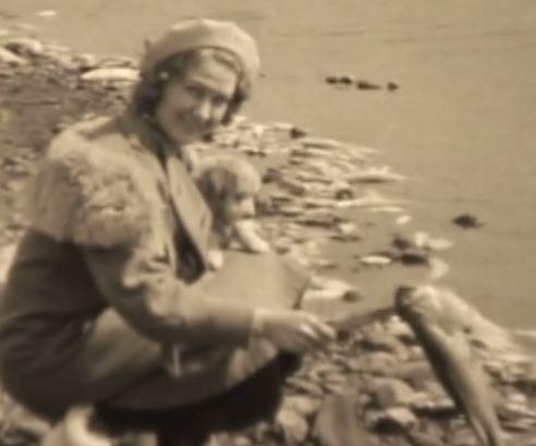South Lindstrom Fish Kill